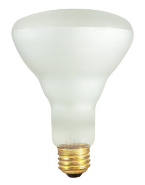 60 watt R30 halogen flood light bulbs