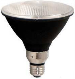 Mercury vapor PAR38 light bulbs are used in landscaping and for outdoor lighting.
